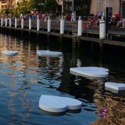 2015-02-08 08.02. - Sydney 086