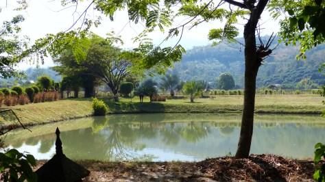 Teich am Gartenrand