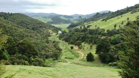 Near Whananaki North