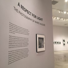 MIAMI 2014 | History Miami | A Respect for Light - Mario Algaze