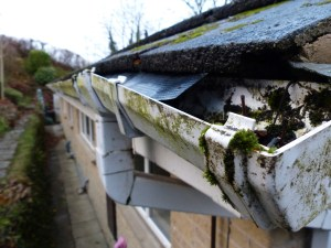 clean gutters to avoid roof damage