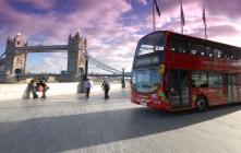 Bus & Tram