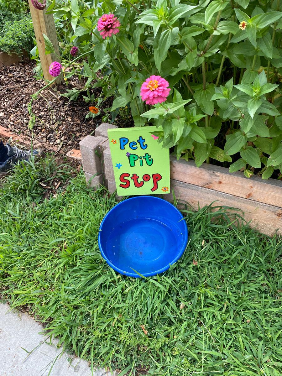 Pet Pit Stop