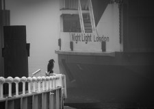ferry-tales-2