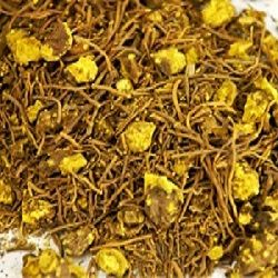 goldenseal and infection
