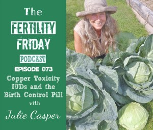 FFP 073 | Copper Toxicity, IUDs and the Birth Control Pill | Julie Casper