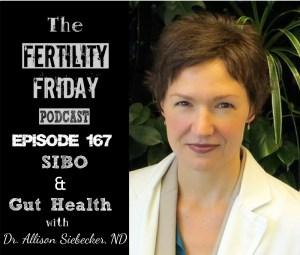 FFP 167 | SIBO & Gut Health | Dr. Allison Siebecker ND