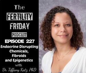 Endocrine Disrupting Chemicals, Fibroids and Epigenetics