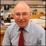 Prof Wayne Gillett