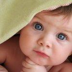 Fertility Show Germany