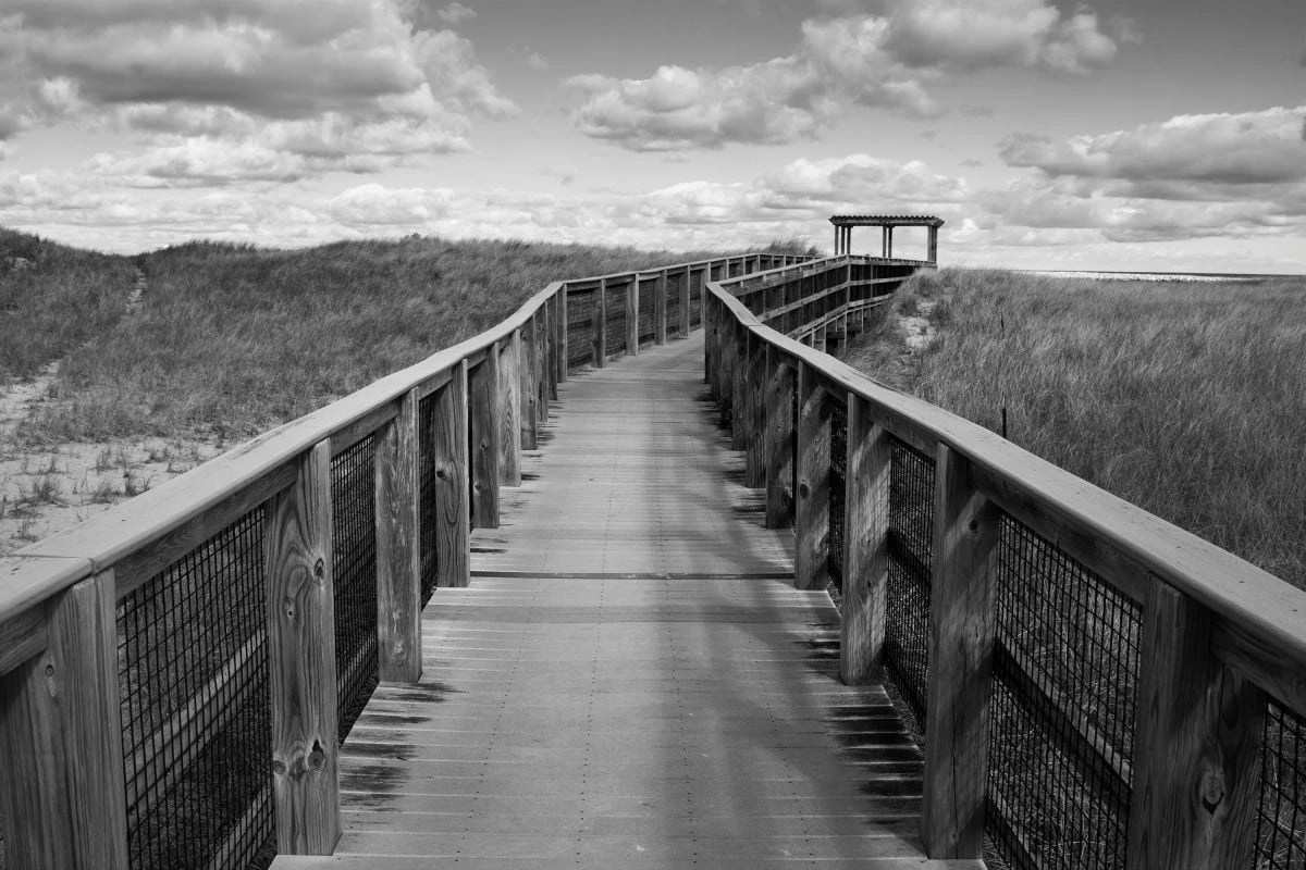 A black and white, digital photograph of a raised, wooden walkway through some sand dunes. The perspective of the photo has the viewer looking straight ahead on the wooden walkway. There are wooden railings on both sides of the walkway and in the distance, the path turns right and leads to a wooden gate. Patches of beach grass cover the dunes and the sky is full of cumulus clouds.