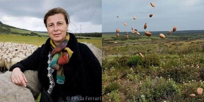 Incontro sull'innovazione con Daniela Ducato e L'uomo che pianta gli alberi