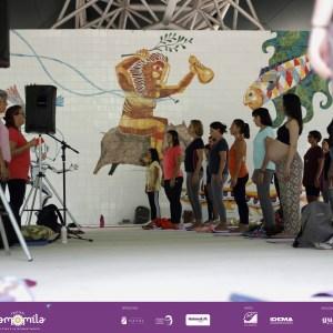Festival Camomila Etapa 1 - (14)