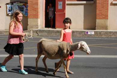 fête du mouton 2015