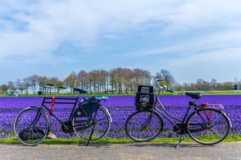visite guidée à vélo