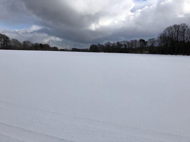 Snowy Hopetoun ...