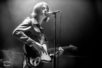 blossoms bearded theory