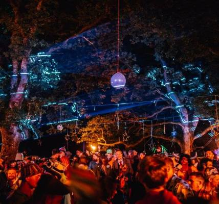 Did anyone see the lazers in the trees?