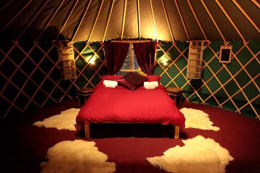 ★ GLAMPING OFFER - only 1 week left! ★...