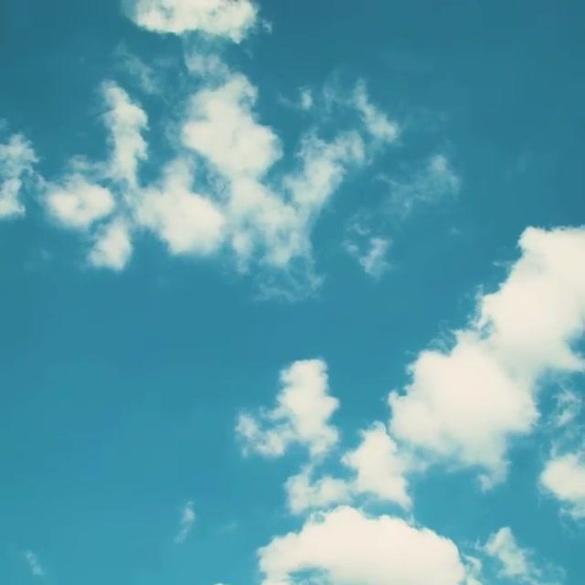 Dreaming of blue skies #FieldDay2020