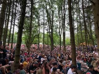 May be an image of 6 people, people standing, tree, crowd and outdoors