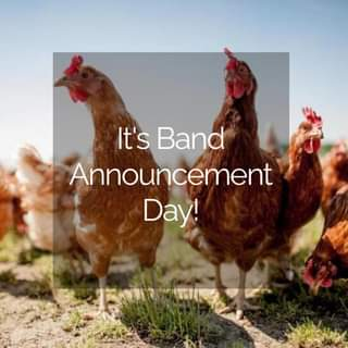 """May be an image of game fowl and text that says """"It's Band Announcement Day!"""""""