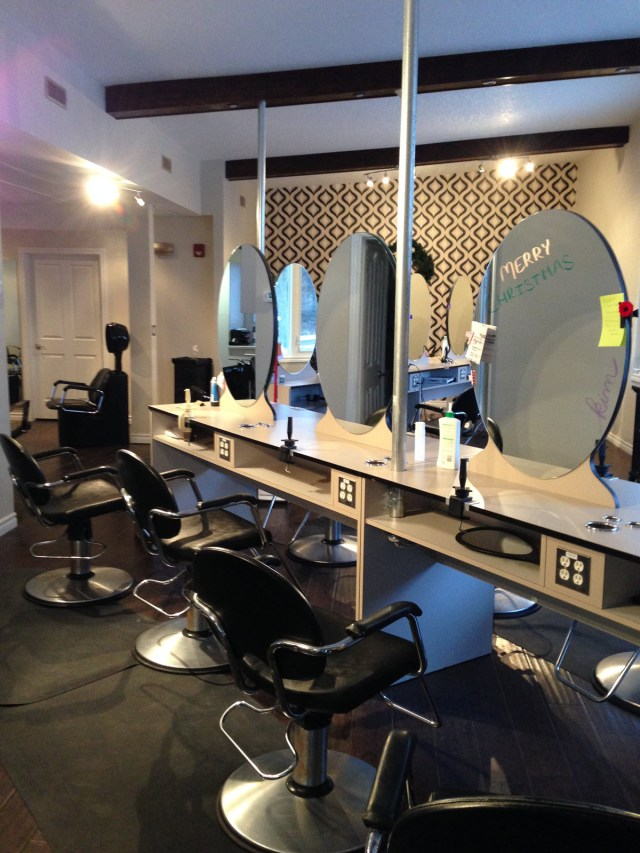 festival school of hairstyling |