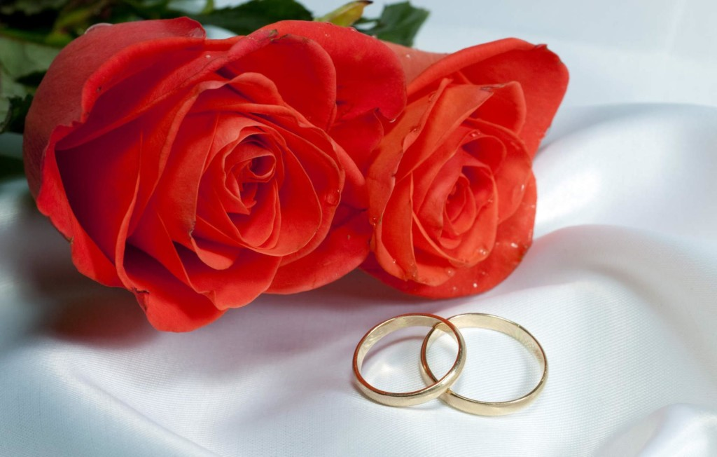 Rose Day Pics HD Images Status Amp Funny Roses Are Red