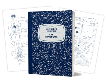 lab-notebook-composite