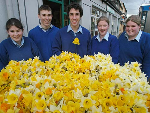 DAFFODIL DAY IN FETHARD Fethard Patrician Presentation Secondary School