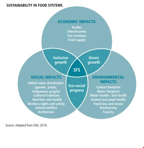 A venn diagram showing the overlap between economic, social, and environmental impacts in sustainable food systems