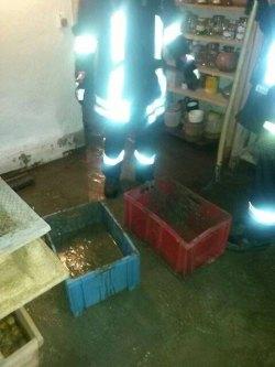 Wasser- und Dreckbeseitigung im Keller