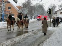 Pferdesegnung 2014 IV