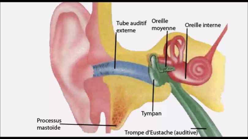 guérison instantanée d'une oreille douloureuse depuis 3 mois