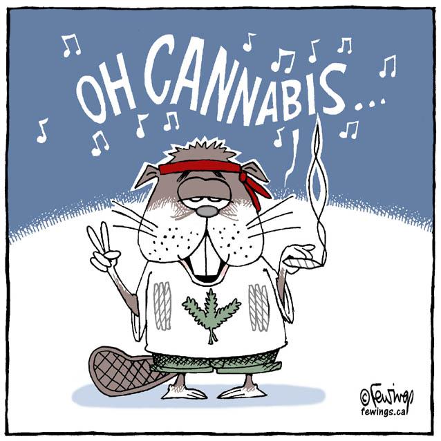 Oh Cannabis Fewings Cartoons