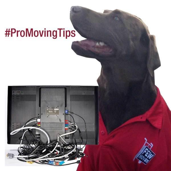 pro-tips-take-a-pic