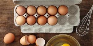 fo2-slider_0005_12 organik yumurta altrv