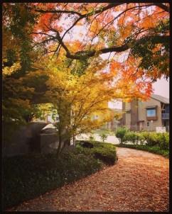 fall16_04