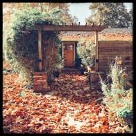 fall16_21