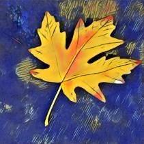 leaves16_06