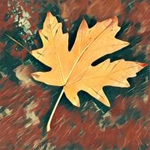 leaves16_10