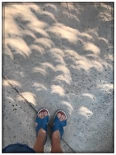 Eclipse17_06