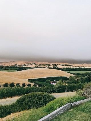 Taber-ranch1