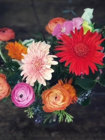 flores-amanda1