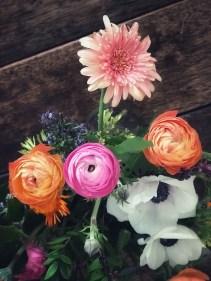flores-amanda3