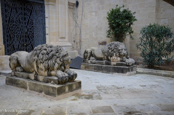 Sleepy lions.