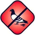 Fugle_fodring