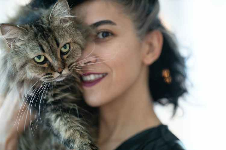 woman carrying brown tabby cat