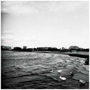 juni-bild17