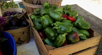 peppers from Cane Creek Farms